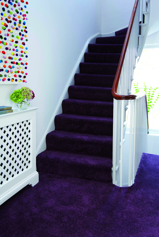 Hurren And Glynn Co Uk The Biggest Selection Of Carpet